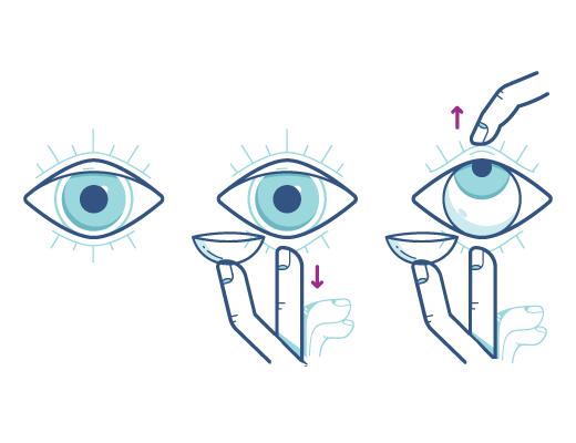 Utilize a técnica para colocar suas lentes de contato